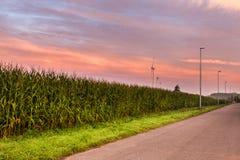 Krajobrazowy whit silnik wiatrowy Fotografia Royalty Free
