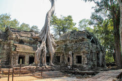 Krajobrazowy widok świątynie przy Angkor Wat, Siem Przeprowadza żniwa, Kambodża Fotografia Royalty Free