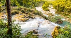 Krajobrazowy widok Agua Azul Obrazy Royalty Free