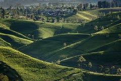 Krajobrazowy widok od giri szczytu, Indonesia zdjęcia stock