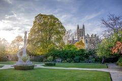 Krajobrazowy widok park na eastside Canterbury katedra fotografia royalty free