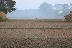 Krajobrazowy widok pole w Nepal fotografia stock