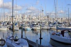 Krajobrazowy widok Westhaven Marina Auckland Nowa Zelandia Zdjęcia Royalty Free