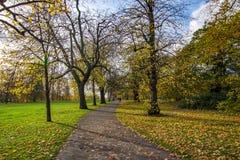 Krajobrazowy widok zwyczajna ścieżka w Hyde parku zdjęcie stock