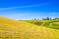 krajobrazowy wiejski Obrazy Stock