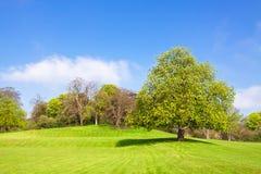 krajobrazowy wiejski Fotografia Royalty Free