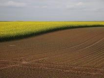 krajobrazowy wiejski Obraz Royalty Free