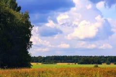 krajobrazowy wiejski lato Fotografia Stock