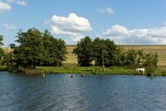 krajobrazowy wiejski lato Zdjęcie Royalty Free
