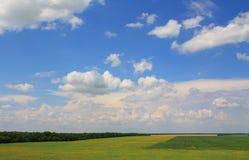 krajobrazowy wiejski lato Obraz Stock