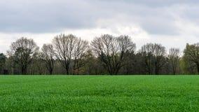 krajobrazowy wiejski pogodny Obraz Royalty Free