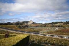 krajobrazowy winnica Fotografia Stock