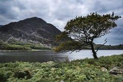 Krajobrazowy wizerunek góra odbijał w spokojnym jeziorze na lecie mo Zdjęcie Stock