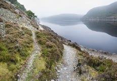 Krajobrazowy wizerunek nad mglistym jeziorem w jesień spadku Zdjęcia Royalty Free