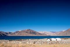 Krajobrazowy wizerunek Pangong jezioro z małymi obozami, góra widok fotografia stock