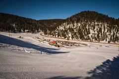 Krajobrazowy wizerunek w śnieg zakrywającym lesie zdjęcia stock