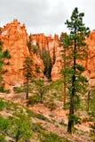krajobrazowy zachód fotografia royalty free