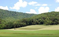 krajobrazowy ziemi uprawnej kołysanie się Obrazy Royalty Free