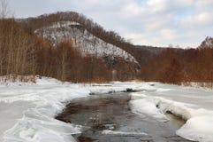 krajobrazowy zimy drewno Zdjęcia Royalty Free