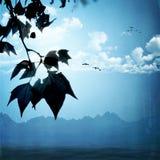 krajobrazowych starych fotografii stylizowany rocznik Zdjęcie Royalty Free