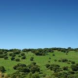 krajobrazu obrazy stock