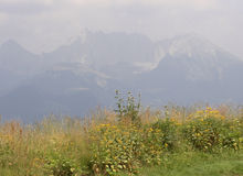 krajobrazu Zdjęcia Stock