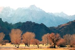 krajobrazu Zdjęcie Royalty Free