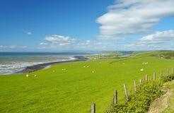 krajobrazu Fotografia Stock