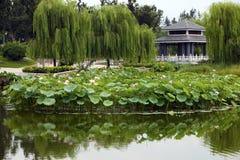 krajobrazu park Zdjęcie Royalty Free
