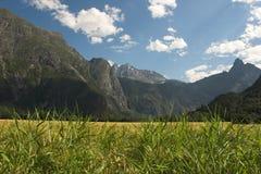 krajobrazu po norwesku Obraz Stock