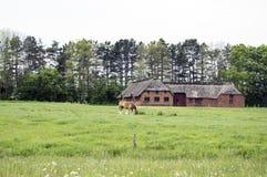 krajobrazu rolnego fotografia stock
