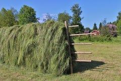krajobrazu rolniczego Zdjęcie Royalty Free