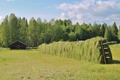 krajobrazu rolniczego Fotografia Royalty Free