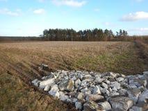 krajobrazu rolniczego Artystyczny spojrzenie w roczników żywych colours Fotografia Stock