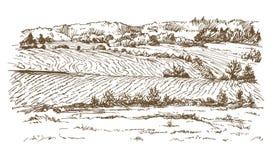 krajobrazu rolniczego odpowiada łąki ilustracji