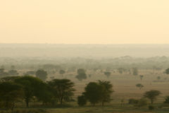 Krajobrazu Tarangire park narodowy, Afryka Obraz Royalty Free
