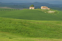 krajobrazu Tuscan Obraz Royalty Free
