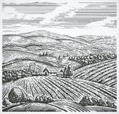 krajobrazu wiejskiego ilustracja wektor