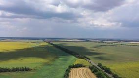 krajobrazu wiejskiego Ty możesz widzieć widok z lotu ptaka pola banatka i słoneczniki zbiory