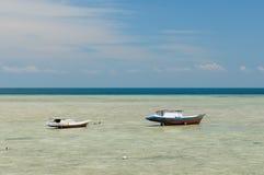 Krajobrazy podczas odpływu Indonezja Fotografia Royalty Free