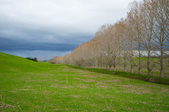 Krajobrazy w Nowa Zelandia Zdjęcia Stock