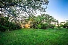 Krajobrazy wokoło wierzbowego miasta zapętlają Texas przy zmierzchem Obraz Royalty Free