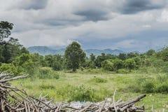 Krajobrazy z drewno przygotowaną kuchnią fotografia stock