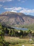 krajowe inyo lasów ii Zdjęcie Stock