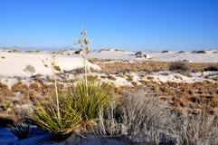 krajowe pomnikowi białe piaski Obraz Stock
