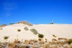 krajowe pomnikowi białe piaski Zdjęcia Stock