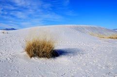 krajowe pomnikowi białe piaski Zdjęcie Royalty Free