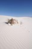 krajowe pomnikowi białe piaski Obrazy Royalty Free