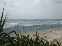 Krajowi połowów miejscowi Sri Lanka na słupach z wybrzeża ocean indyjski Zdjęcie Royalty Free