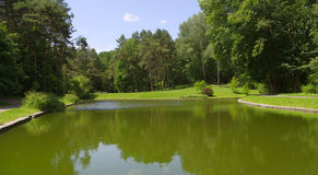 Krajowy dendrological parkowy ` SOFIYIVKA ` Obrazy Stock